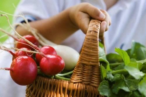 Как купить овощи и фрукты по Интернету