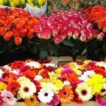 Как продавать цветы