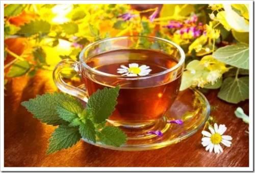 Как часто можно употреблять чай?