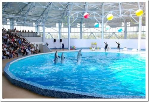 Дельфинарий и аквапарк Евпатории