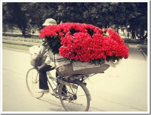 Цветы в коробках: популярный тренд теперь и в России
