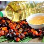 Пальмовое масло решили лишить налоговых льгот