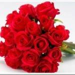 Букет красных роз – лучший подарок для романтиков