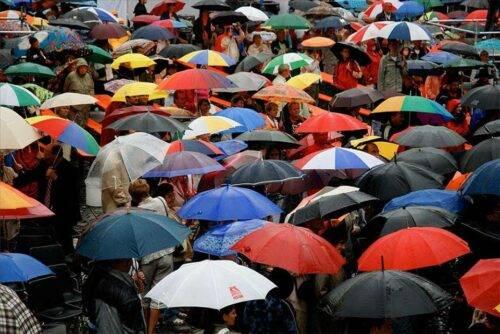 Какого производителя зонтов лучше выбрать