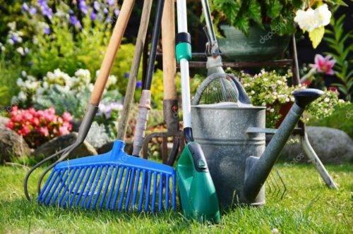 Садовый инвентарь: что должно быть у каждого дачн