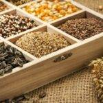 Как хранить семена овощей