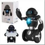 Какие бывают роботы-игрушки