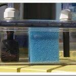 Как выбрать фильтр для аквариума?