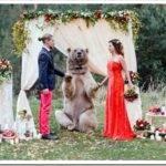 Необычные варианты организации свадьбы
