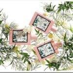 Описание коллекции ароматов Gucci Bloom