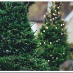 Из чего делают искусственные елки и как их хранить