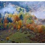 Отдых в Карпатах осенью — что посмотреть и чем заняться
