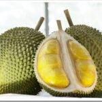 Экзотические фрукты — виды и названия