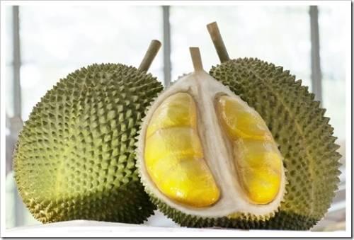Шорт-лист фруктов, категорически рекомендованных к дегустации
