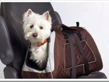 летняя сумка-переноска