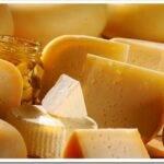 Виды заквасок для приготовления сыра и какую выбрать